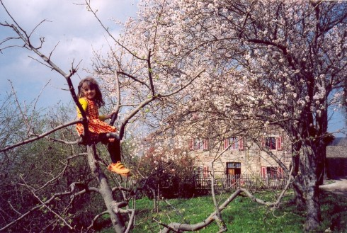 Mathilde_primavera